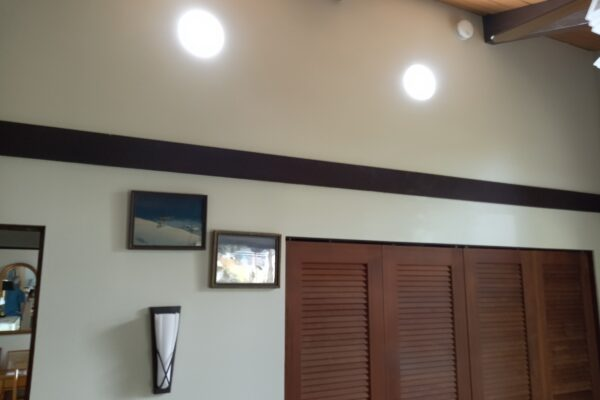 Wall mounted Redilight